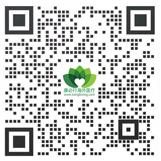 康必行海外医疗微信客服号