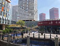 上海海外看病
