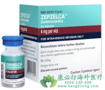 鲁比卡丁/卢比卡丁(ZEPZELCA)二线治疗非小细胞肺癌的效果如何?
